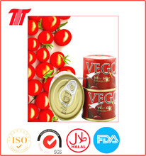 tomato paste canned VEGO brand 70g special tin