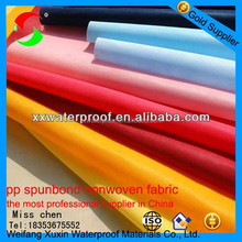 the most professional pp nonwoven fabric for shoe