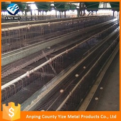 customized chiken cage /chicken cage equipment/chicken house
