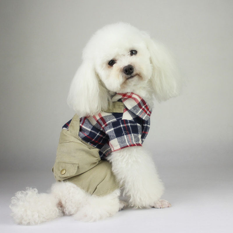 Free Shipping Clothes Winter Warm Clothing For Pet The Corners of Fur Collar Jacket Durable Winter Coat Apparel 5 Sizes