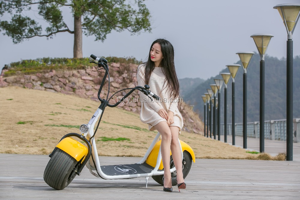 800W CE certificated motorized Scooter Fly Electric Scooter