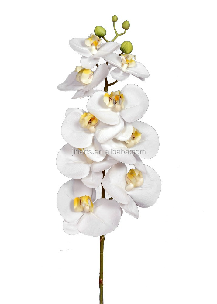 "28"" phalaenopsis stem real touch flower"