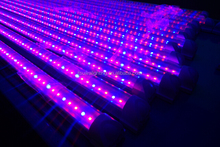 Best sellers hydroponics growing light system full spectrum grow tube apollo 8 led grow lights/hydroponic supplies