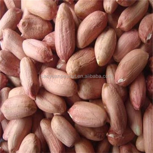 raw China peanuts with factory peanut price and Peanuts with peanut price