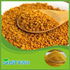 /product-detail/free-sample-natural-herbal-healthcare-supplement-bee-pollen-60077080246.html