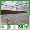 Vegetable Commercial Film Low Cost Greenhouse