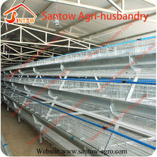 Full automatic chicken layer cage high quality cheap price galvanized birds breeding cages