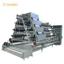 Hot Sale Automatic Layer Chicken House for Farm