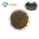 Botanical Natural Epimedium Extract 10% Icariin Horny Goat Weed Extract Powder