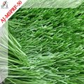 All weather use Artificial turf for kids