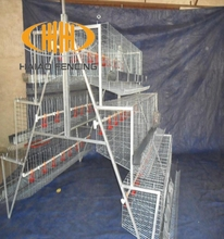 High quality factory direct sale chicken layer battery cage price for sale