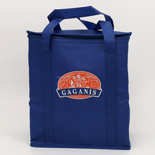 Non woven lunch bag cooler with zipper
