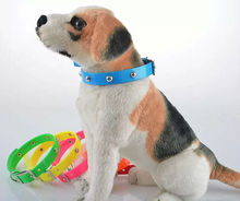 Very high quality wholesale or retail sales promotion cute TPU dog collar & cat collar waterproof dog collar pet products