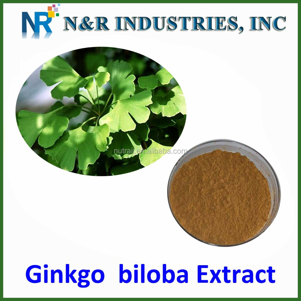 CAS:90045-36-6/ Pure Ginkgo biloba Extract supplier