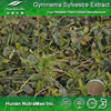 Diabetes supplements high quality herbal Gymnema Sylvestre Extract
