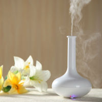 2014 new welding air purifier / electric air humidifier / ultrasonic aroma diffuser GX