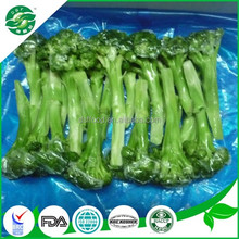 good quality new crop of frozen fresh broccoli