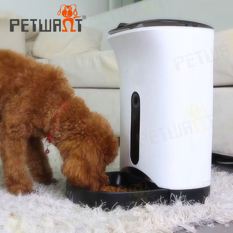 Petwant new design self-developed touch button automatic dog feeder