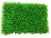 /product-detail/gate-ball-court-artificial-grass-synthetic-grass-for-soccer-fields-60661105399.html