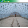 Easily Installed Sainpoly Garden Greenhouse for Sale