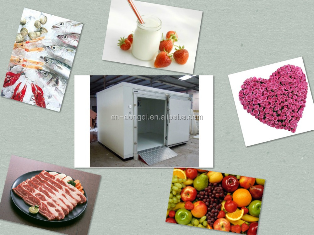 fresh milk and yogurt fish meat vegetable flower cold storage room / cooler with insulated PU panel