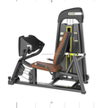 Leg Press Exercise Equipment Fitness Machine TNLL-003