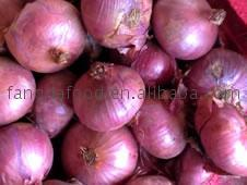 sell 2012 red onion