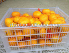 Chinese <strong>Orange</strong> Fresh Fruit