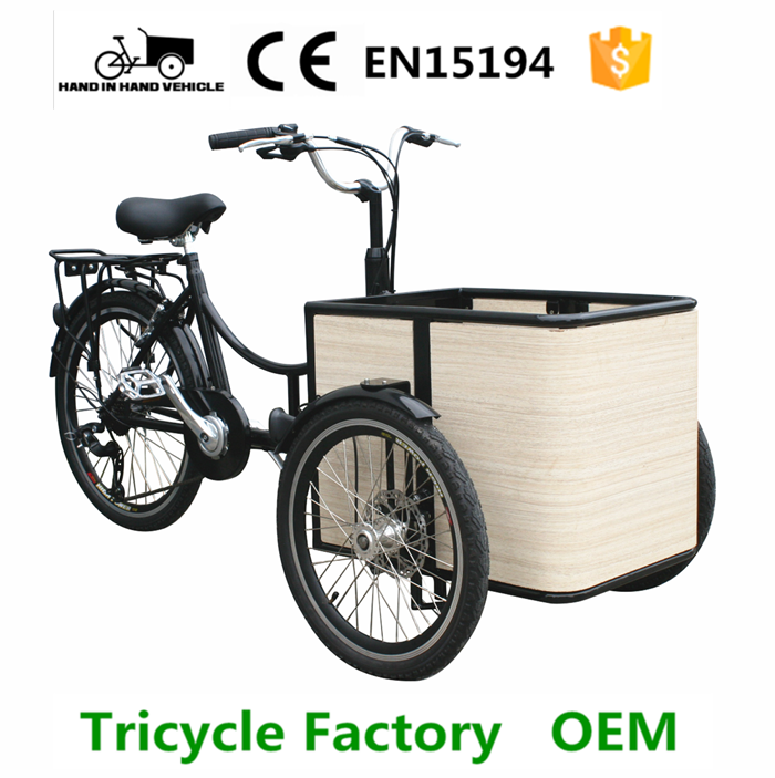 mini carrier trike china make for sale