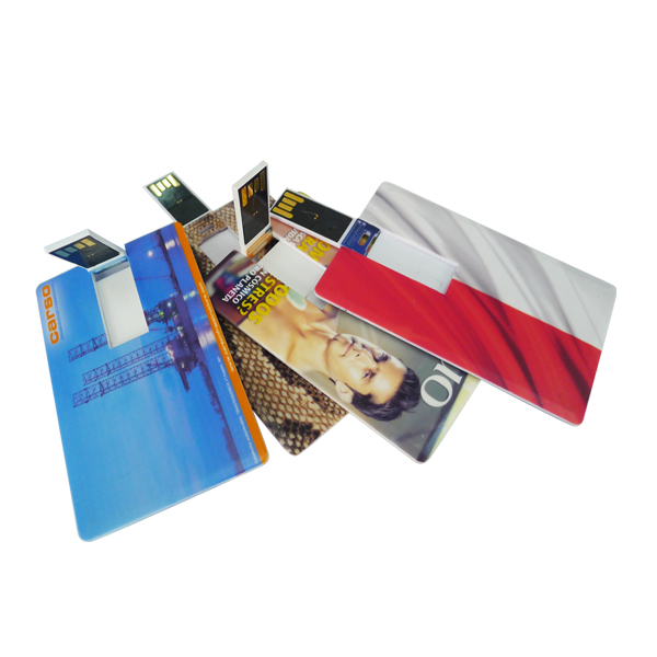 OEM Custom Color Plastic Credit Card Usb Business Card 2GB Full Color Printing Both Side
