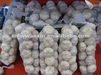 Chinese white red garlic production 2012