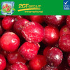 FROZEN FRUIT IQF Frozen cranberry whole High Quality best price for sale