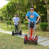 China cheap electric scooter, electric chariot,1000w Zappy self balance scooter