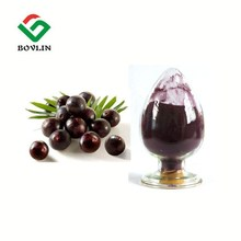 Wholesale Fresh Acai Berry Extract Powder for Antioxidant