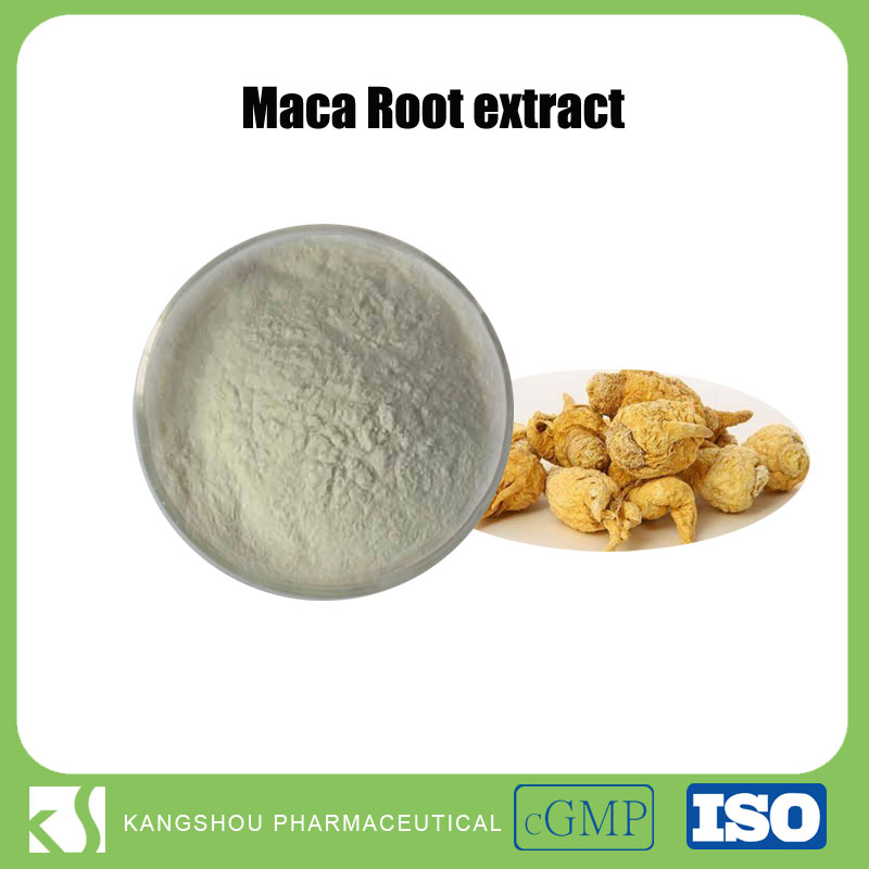 Natural maca energy drink material organic maca extract 10:1 maca root extract