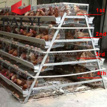 Egg Layer Chicken Poultry Layer Cage/Battery Breeding Cages For Chickens