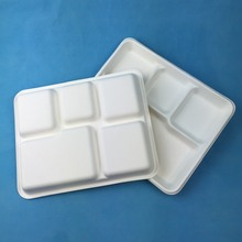 Biodegradable Five Compartments Sugar Cane Fiber Lunch Tray