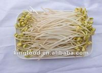 Supply newly frozen bean sprout