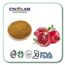 GMP certificate pomegranate extract powder 20% punicalagin