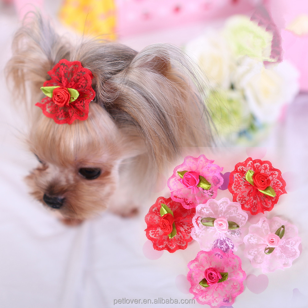 Pet Apparel & Accessories Type 2016 new Dog Apparel cute beauty pet accessories