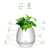 Shenzhen Factory New Product Bluetooth Flowerpot