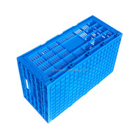 Plastic collapsible egg crate