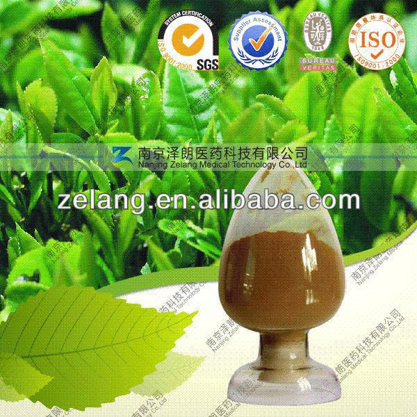 Paraguay Tea Plant Extract Supplier