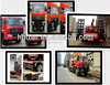 Dongfeng 10 big loading crane trucks sells hot