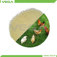 quality products single cell protein for feed additives made in china