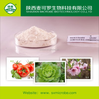 10% antibiotics wettable powder
