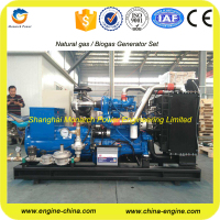 China factory Deutz mwm natural gas engine generator price