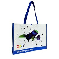 pp woven zipper shopping bag , plastic bag with zipper