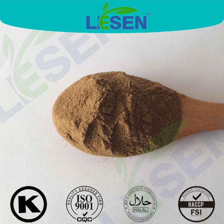 Powerful Herbal Extract Dong Quai Extract(Angelica Extract)