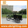 hot sale three wheel electric cargo bike for adults with great price